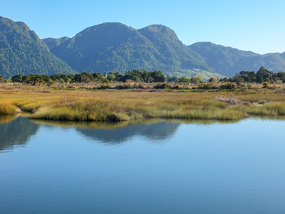 Aorere River estuary with bush clad hills on our small group tour