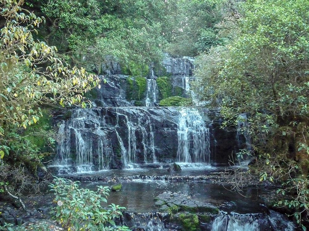 Purakaunui Falls on our scenic small group tour